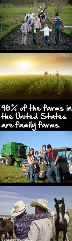 96% of the farms in the U.S. are family farms. #agriculture #family