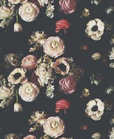 Into the Garden Black Dark Floral Wallpaper
