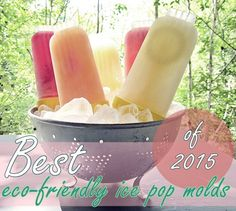 A slew of eco-friendly, reusable, BPA-free popsicle molds, plus recipes and more! Homemade Popsicles, Homemade Ice, Popsicle Molds, Ice Ice Baby, Ice Pops, Smoothies, Eco Friendly, Treats, Stainless Steel