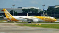 Scoot (SG) Boeing 787-9 Dreamliner 9V-OJD aircraft, named ''Big Yella Fella'', skating at Singapore Changi International Airport. 07/01/2016. (Big Yella Fella in slag=Big Yellow Boyfrieng).