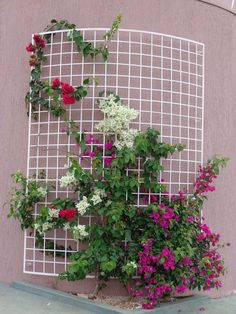 (notitle) - Support for climbing plants - Plantio Small Balcony Garden, Balcony Flowers, Flower Planters, House Plants Decor, Plant Decor, Glass Garden, Garden Art, Jardim Vertical Diy, Flower Vase Design