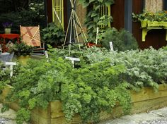 Get a Jump on a Cool-Season Vegetable Garden Late summer, fall and spring are great times to plant cool-season crops like salad greens, spinach, beets, carrots and peas