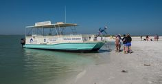 The Dolphin Explorer Marco Island, Florida. Families can enjoy a cruise on a 30-foot catamaran & watch bottlenose dolphins play in their natural habitat in the Gulf of Mexico. Photo by Mary Carol Fitzgerald.   Must Do Visitor Guides