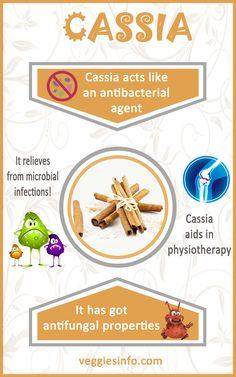 Cassia And Its Unbeatable Health Benefits! | veggiesinfo For More info: http://veggiesinfo.com/cassia-unbeatable-health-benefits/