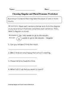 Singular and Plural Pronouns Worksheets