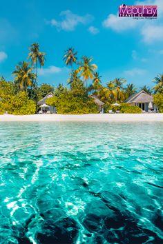 Philippines Travel Agents in UK Barbados Beaches, Philippines Beaches, Tropical Beaches, Philippines Travel, Travel Center, Beach Holiday, Free Travel, Beach Trip, Rum