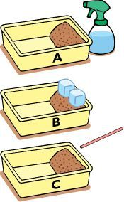 This is an erosion experiment done comparing which type of natural erosion occurs the quickest: rain, glacier melting, or wind. This would be a great activity that could be done in class when talking about natural types of erosion. The students could postulate which they think would work the fastest, do the experiment, and write up their results which we could talk about as class.
