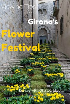 Inhale at the Girona Flower Festival Stop and smell the roses - or the daisies, lilacs, marigolds, & poppies in Girona this week as the city is overtaken  by flowers at the annual Flower Festivall #TempsdeFlors