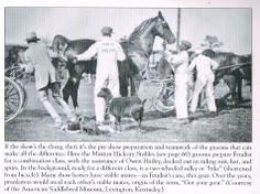 """Something you rarely see at horse shows anymore.  The Combination Class.  Horses would enter the class in harness and be judged as driving horses.  Then its """"grooms in please"""" and the harness is swept off and into the vehicle and replaced with a saddle and bridle.  Horses are then judged a full class as riding horses."""