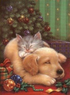 de - Your free picture community - Weihnachten Christmas Scenes, Christmas Animals, Christmas Cats, Christmas Pictures, Winter Christmas, Christmas Holidays, Christmas Puppy, Illustration Noel, Christmas Illustration