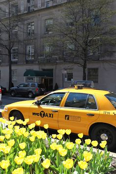 INSTA* There is nothing like a yellow cab and matching tulips to describe spring in New York - from Habitually Chic Spring In New York, Go To New York, New York City, Little Italy, A New York Minute, Empire State Of Mind, I Love Nyc, My Kind Of Town, City That Never Sleeps
