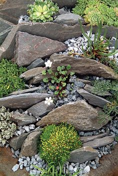 http://www.floranazahrade.cz/zakladame-zahradu-kamen-skalka-zidky-a-dekorace/