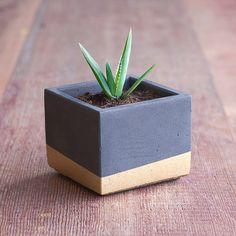 "Color Block Concrete Planter 3"" Square, Charcoal and Gold"