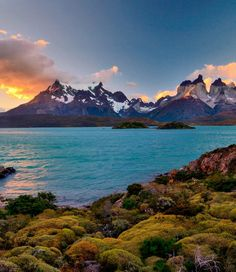 Straddling #Chile and #Argentina, Patagonia is one of the most beautiful and remote environments in the world: trek over glaciers, gallop across vast plains and kayak across turquoise glacial lakes - all the while keeping an eye out for condors, penguins, wild guanaco and even pumas.