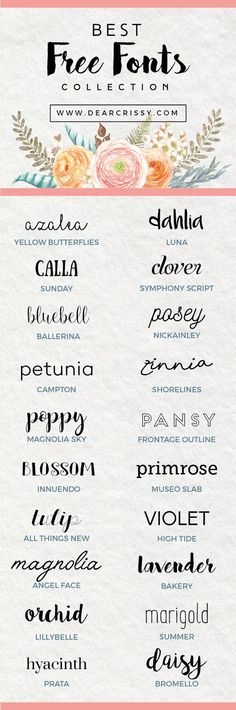 Are you font obsessed? You're going to love my list of the 20 best free fonts for download. These trendy fonts will make your next project shine.