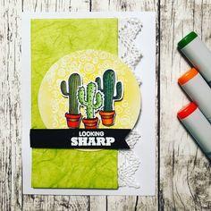 Looking sharp. Still not tired of the March #mymonthlyhero kit. #card #cardmaking #cardmakersofinstagram #cactus #lookingsharp #heroarts…