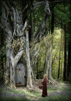 image detail for free woodland cottage wallpaper