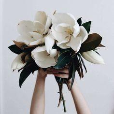 modern bouquet of white flower