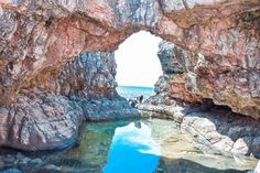 Looking to get away from the crowds in Dubrovnik? Well look no further because this guide will give you all the details on a dubrovnik to lokrum day trip. Lokrum Island, Benedictine Monks, Stay Overnight, Adriatic Sea, The Monks, Relaxing Day, Exotic Plants, Dubrovnik, Buy Tickets