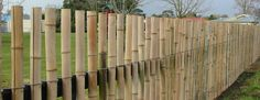 Bamboo fencing over chain link fence
