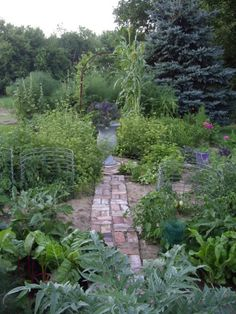 The Potager - Perennials Forum - GardenWeb