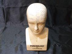 Phrenology Bust by VideGrenierWithLove on Etsy
