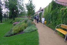 Park roku 2011 - 1. místo   SZUZ Park Landscape, Stepping Stones, Parks, Outdoor Decor, Ideas, Stair Risers, Thoughts, Parkas
