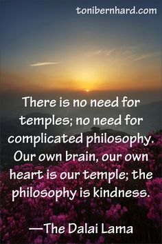 There is no need for temples; no need for complicated philosophy. Our own brain, our own Heart is our temple; the philosophy is kindness. The Dalai Lama