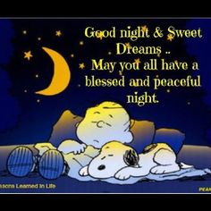 Goodnight snoopy, goodnight