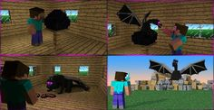 How not to raise an enderdragon