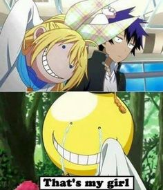 nisekoi, anime, and funny,assassination classroom