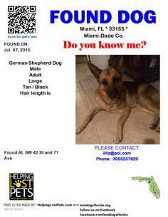 Found Dog - German Shepherd Dog - Miami, FL, United States