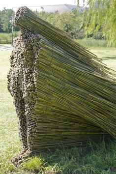 """#sculpture of a woman by Cleveland-based Olga Ziemska from her series 'Stillness in motion: The Matka Series"""" #art #bamboo"""