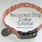 toula is about to outgrow her second collar--might be time to make my own