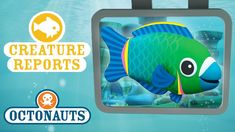 Related image Octonauts Party, Cool Paintings, Tech Logos, Creatures, School, Image