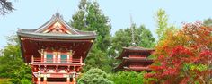 Japanese Tea Garden, the oldest public Japanese garden in the United States, is located inside the Golden Gate Park.  It offers the enchanting experience of a traditional tea ceremony that might be unique in US.