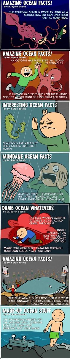 Amazing Ocean Facts!