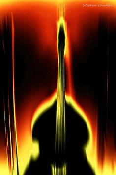 Double Bass by Light + Shade