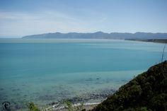 Eine Bucht auf der Nordinsel Neuseelands - Da möchte man einfach durchschwimmen