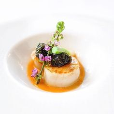 "Pan seared scallops with an ""Aurore"" sauce, complete with spring baby leek & Oscietra caviar. ✅ By - ✅ ➡️ Submit your recipes to www. Seafood Recipes, Gourmet Recipes, Cooking Recipes, Caviar Recipes, Food Design, Food Plating Techniques, Scallop Recipes, Food Presentation, Food Inspiration"