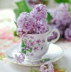 Lilacs in fancy teacup with matching violets on it