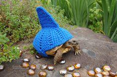 WTF? Gestrickte Überzieher für Schildkröten-Panzer mit ernstem Hintergrund