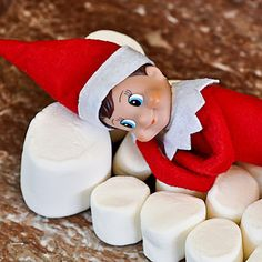 ELF ON THE SHELF is a holiday photo tradition that's sweeping the nation! What's your family tradition?!   Palm Valley Pediatric Dentistry