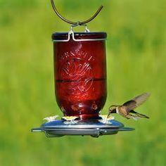 Image result for Mason Jar Hummingbird Feeder