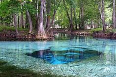 Ginnie Springs - Florida