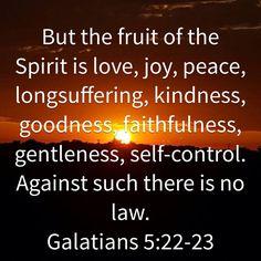 Daily Scripture, Scripture Reading, Scripture Verses, Bible Scriptures, Biblical Quotes, Religious Quotes, Spiritual Quotes, Wisdom Quotes, Book Of Galatians