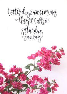better days...Saturday & Sunday! ♥