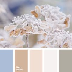 Great collection of Pastel Palettes with different shades. Color ideas for home, bedroom, kitchen, wall, living room, bathroom, wedding decoration | Page 61 of 165.