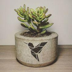 #concrete #diy #kaktus #succulent #handmade #forhome #pim_for_home #горшкиизбетона #бетон #мастеркласс ##Химки #Москва #Долгопрудный #суккулент #кактус #своимируками #сделанослюбовью #куркино #длядома #уют    Один из наших любимых горшков, в композиции из нескольких штук смотрится очень красиво! Суккуленты -очень удобное растение, создано природой для ленивых эстетов! ✌