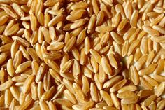 The Super Grains You Should Be Eating